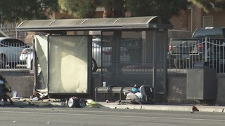 1 dead after vehicle crashes into bus stop