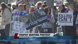 Animal lovers protest trophy hunting