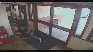 WATCH: Mother fights off purse snatcher