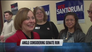 Sharron Angle mulls US Senate bid