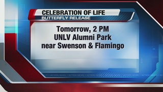Butterfly release to celebrate lives lost