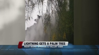 Lightning hits palm tree, causes fire