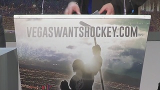 NHL to add team in Las Vegas