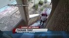 CAUGHT ON CAMERA: Package theft while owner away