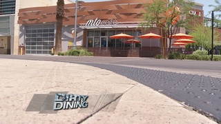 DIRTY DINING: MTO Cafe in Downtown Summerlin