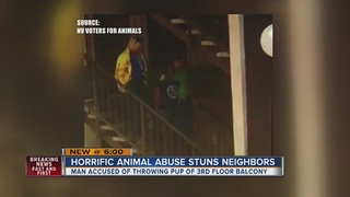 YOU ASK: Neighbors say man threw puppy