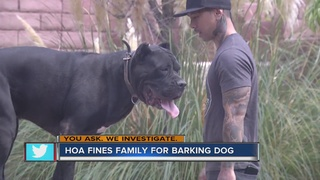 YOU ASK: Family says HOA hates their big dog