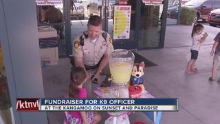 Girl raises money for K9s with lemonade stand
