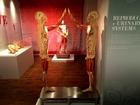 Real Bodies exhibit opens at Bally's Las Vegas