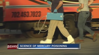 How dangerous is mercury contamination?