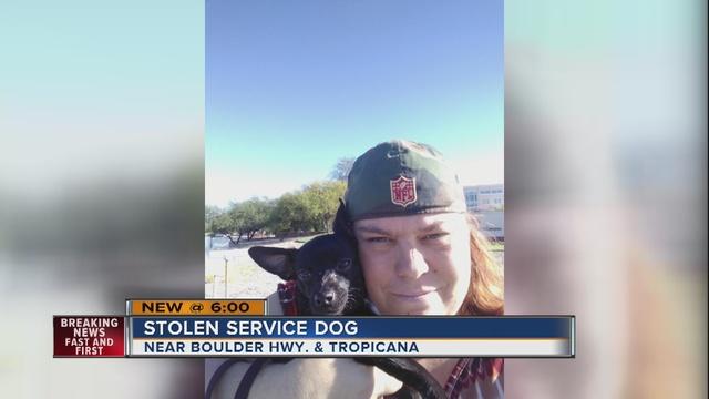 Dog stolen out of Boulder Highway apartment