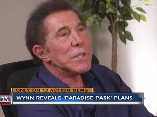 Wynn talks about his new project: Paradise Park
