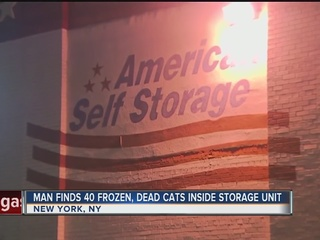 Man find 40 dead cats inside storage unit