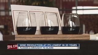 World wine production slips amid rough weather