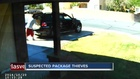 CAUGHT ON CAMERA: Thieves calmly steal package