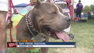 Las Vegas Pride urges LGBTQ+ community to vote