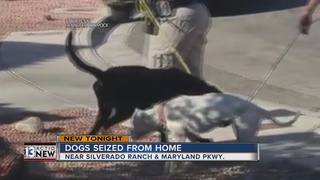 Skinny dogs removed from home by animal control