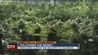 Following the money after Colorado legalized pot