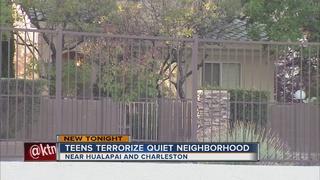 Parents: Two teens terrorizing children