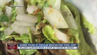 DIRTY DINING: Worms at Tacos El Gordo