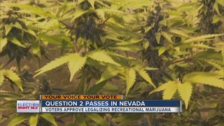 NV voters speak out about legalizing pot