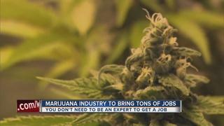Marijuana expo focuses on job opportunity