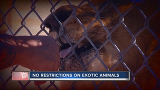 CONTACT 13: Nevada law allows for exotic animals