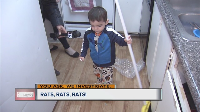 Moms say apartments under siege from rats