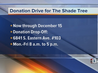 Helping Families at The Shade Tree