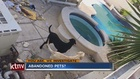 YOU ASK: Woman says neighbor abandoned dogs