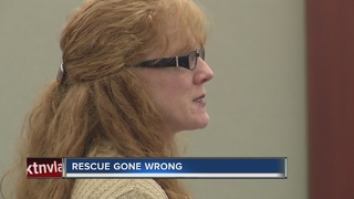 CONTACT 13: Judge speaks in case of 18 dogs