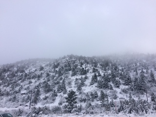 PHOTOS: Christmas Eve snowfall at Lee Canyon