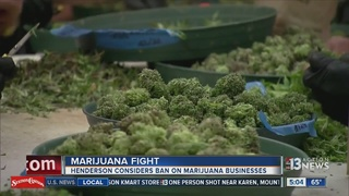 Henderson considers moratorium on pot businesses