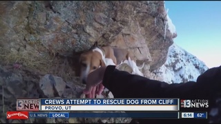 WATCH: Crews attempt to rescue dog from cliff