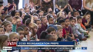 CCSD moves forward with reorganization