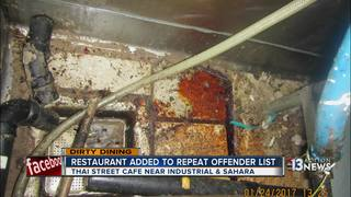 DIRTY DINING: Thai St. Cafe now repeat offender