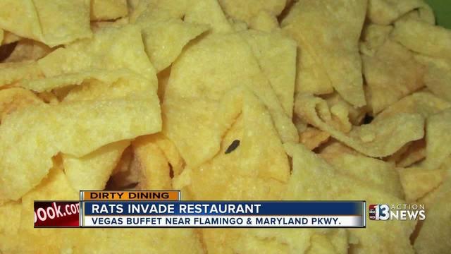DIRTY DINING: Rats at Vegas Buffet