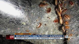 DIRTY DINING: Gandhi India's Cuisine shut down
