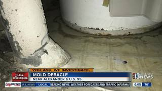 YOU ASK: Woman takes control of mold problem
