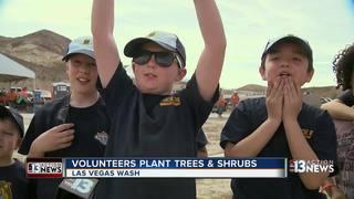 Volunteers take part in Las Vegas Wash Green-Up