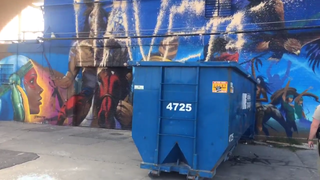 Video, photos posted of #NoDAPL mural vandalism