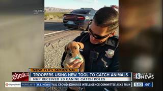 NHP getting new tool to catch animals