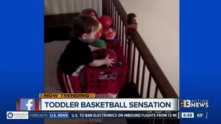 Toddler becomes basketball sensation