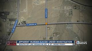 Couple identified in apparent murder-suicide