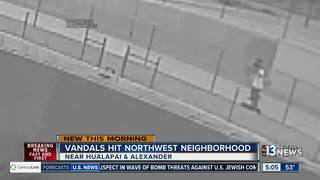 CAUGHT ON CAMERA: Vandalism upsetting neighbors