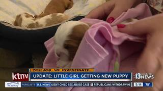Breeder donates puppy to family whose dog died