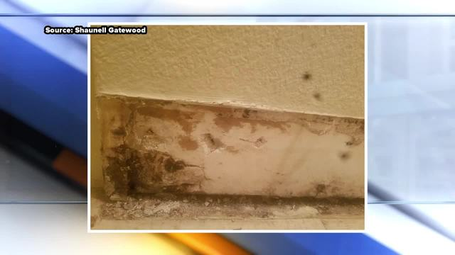 Mold spreading to several apartments at complex