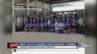 Golden Knights, Nevada Storm form partnership