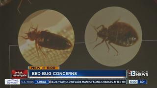 YOU ASK: Bed bug concern at hospital