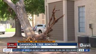 Tree removed after leaning over Vegas apartment